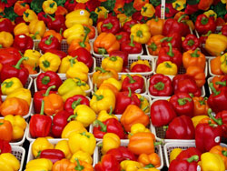 Bell Pepper Allergy and Intolerance